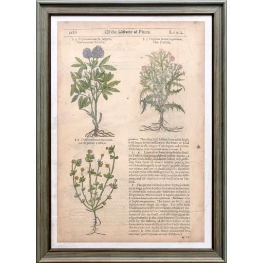 Set de 2 Quadros Gardeners Journaliv