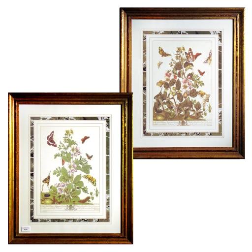 Set de 2 Quadros Gravura Floral A