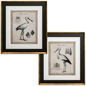 Set de 2 Quadros Antiquarian Flamingos